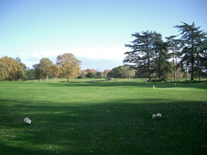 Photo du Golf d'Angers