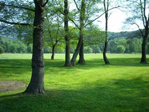 Photo du Golf de la ligne bleue des Vosges