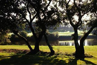 Photo du Golf de Savenay